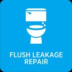 Flush Leakage